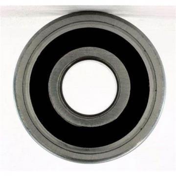 Zys Auto Bearing 6301 6302 Single Row Deep Groove Ball Bearings Pump Bearing 6303